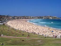 surf en australie