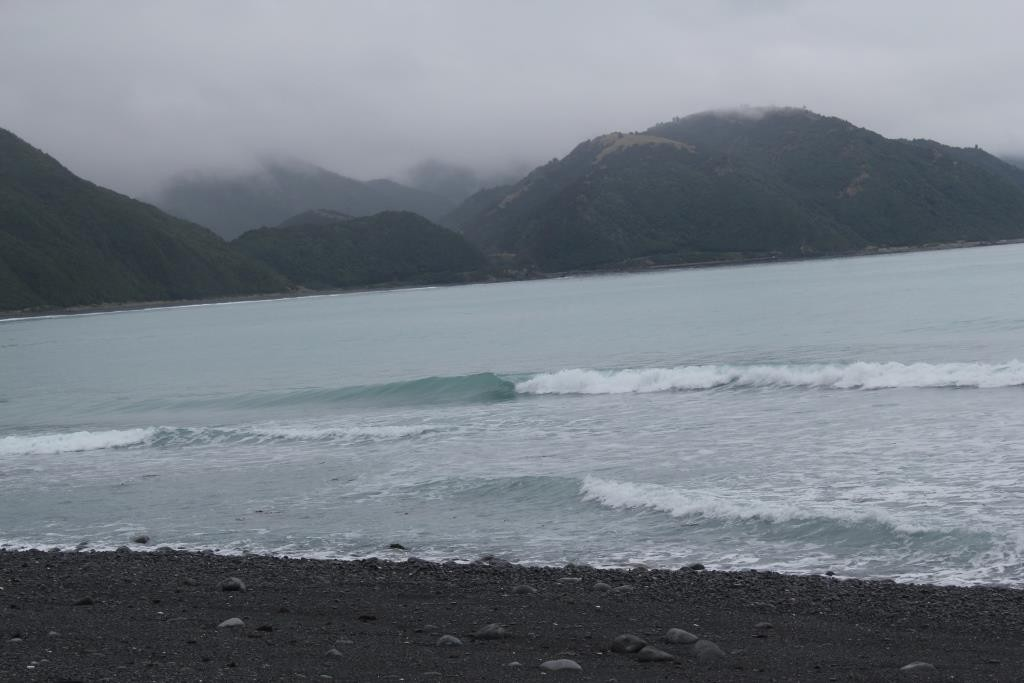 kaikoura meat works jour2 (12)