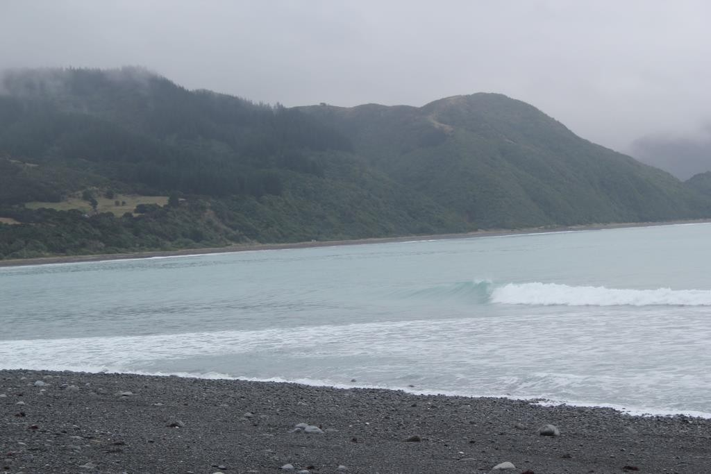 kaikoura meat works jour2 (6)